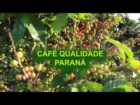 Post Agricultura: Cultivo de Café