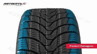 Обзор зимней шины  Premiorri Viamaggiore ● Автосеть ●