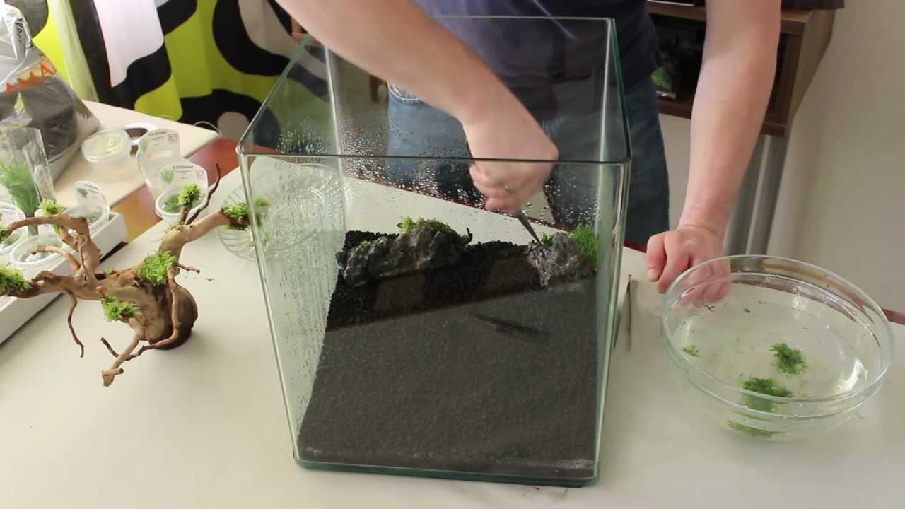 aquarium einrichtung nano cube 30l zeitraffer youtube. Black Bedroom Furniture Sets. Home Design Ideas