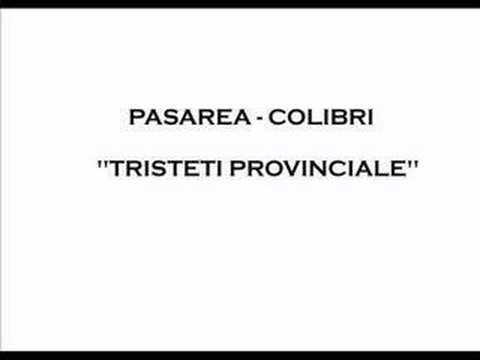 Pasarea Colibri - Tristeti provinciale