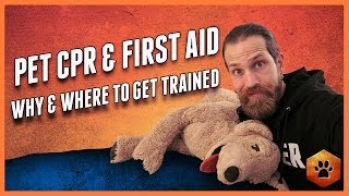 Pet First Aid and Pet CPR - WHY and HOW to get training
