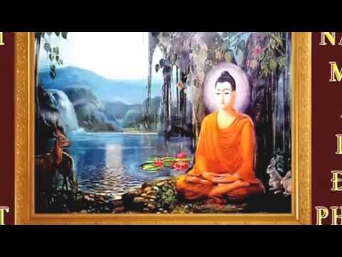 Nam Mô Bổn Sư Thích Ca 2015 - Nhạc Niệm Phật Mới Nhất