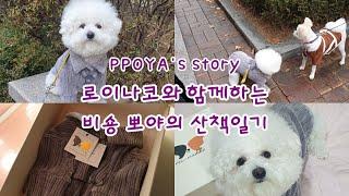 로이나코와 함께하는 산책일지! (강아지도 명품옷이!!!…