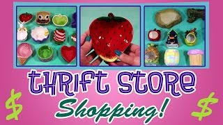 THRIFT SHOPPING! (For Hamster Supplies) PT. 2 Thumbnail