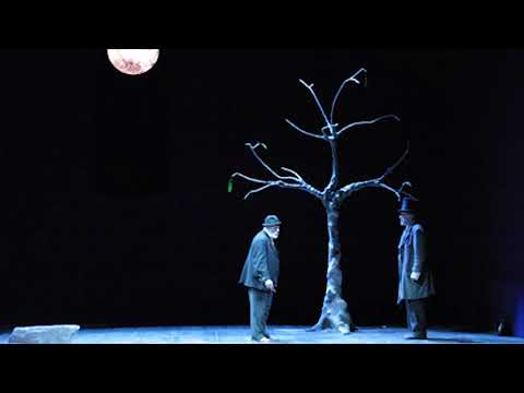 "The History of Beckett's ""Waiting for Godot"" (1994)"