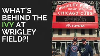 My First Trip to Wrigley Field! |Chicago Vlog