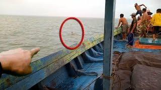 Terekam Dari Jauh! Warga Terkejut! Dikira ikan Besar, Tak Disangka Ternyata itu Sosok Rusa Di Laut!