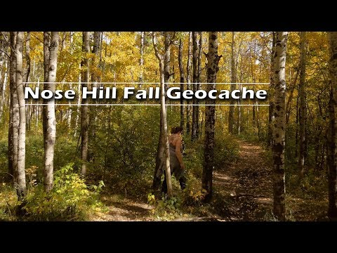 Nose Hill Park Calgary Fall Geocaching   Journey Alberta
