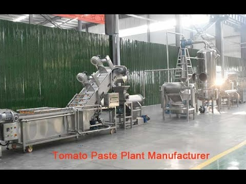 Tomato Processing Business Plan Tomato Paste Plant Manufacturer