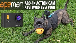 $80 GOPRO KILLER?!? - Apeman A80 Action Camera Review