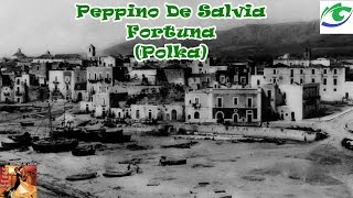 Peppino De Salvia - Fortuna (Polka)