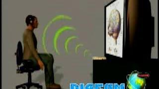 2014 Latest 3D Cell Diacom NLS Heath & Sub-health Analyzer in Spanish and English