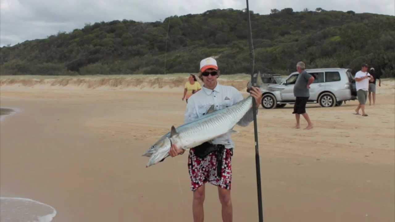 Tailor Fishing Fraser Island