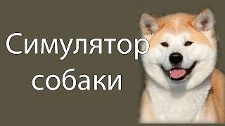Симулятор собаки !