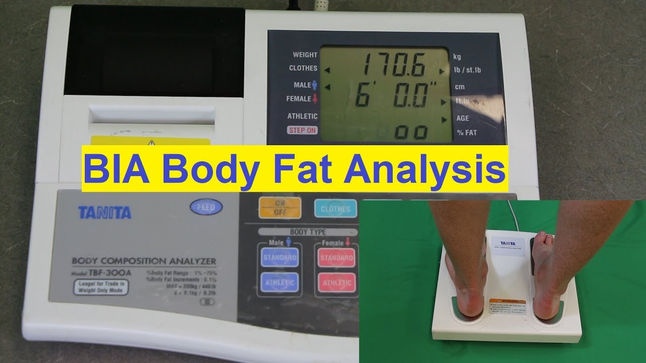 Body fat calculating device