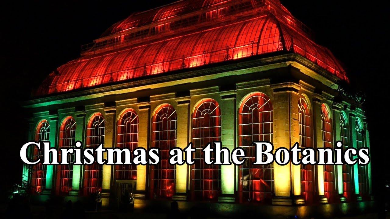 Christmas at the Botanics, 2017 in the Royal Botanic Garden ...