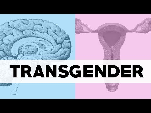 What Does Transgender Mean Youtube