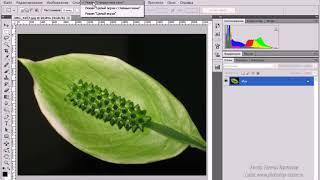 Уроки в Photoshop CS5. Обзор интерфейса