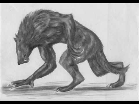 Daniel Landa - Vlkodlakům