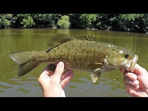 Indiana Kayak Fishing: Tippecanoe Smallmouth 7/8/18