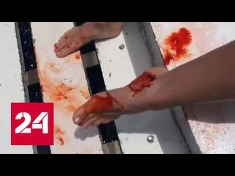 Гиг Видео Хрупкую девушку разрывают три огромных