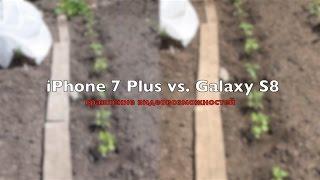 Galaxy S8 vs iPhone 7 Plus: видеовозможности