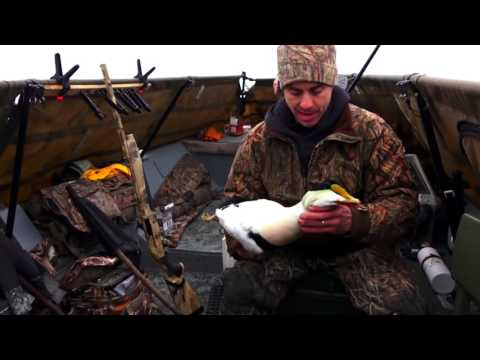 Massachusetts Bay Sea Ducks | Cabela