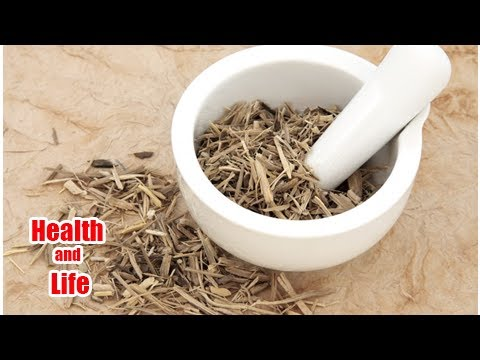 Siberian Ginseng for Energy and Endurance