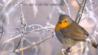 His Eye is on the Sparrow (Piano & Instrumental w/lyrics)