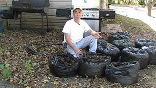 EZ Autumn Composting with Leaves!