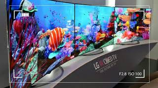 If That You Have The Money and You Need The Best TV Cash Can Purchase Today, This is it LG 65EC9700