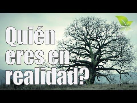 El árbol confundido