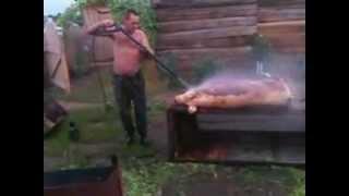 быстрая обработка свиньи