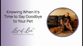 Knowing When it's Time to Say Goodbye to Your Pet