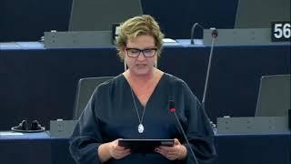 Karin Karlsbro 18 Dec 2019 plenary speech on EU   Mercosur