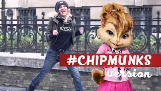 Dara Rolins feat. Kvintesence Quartet - Ver mi #CHIPMUNKS