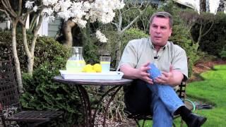 "Adoption Advice 1: ""This is My Lemonade--An Adoption Story"""