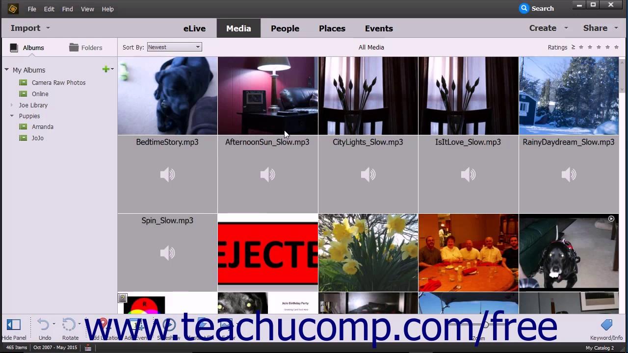 photoshop elements 15 tutorial the organizer environment adobe training