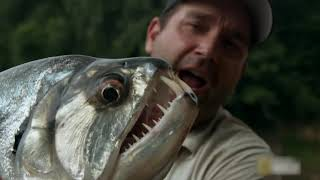 15 Biggest River Monsters Ever Caught