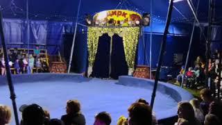 Цирк фараон Заинск 17.08.2018