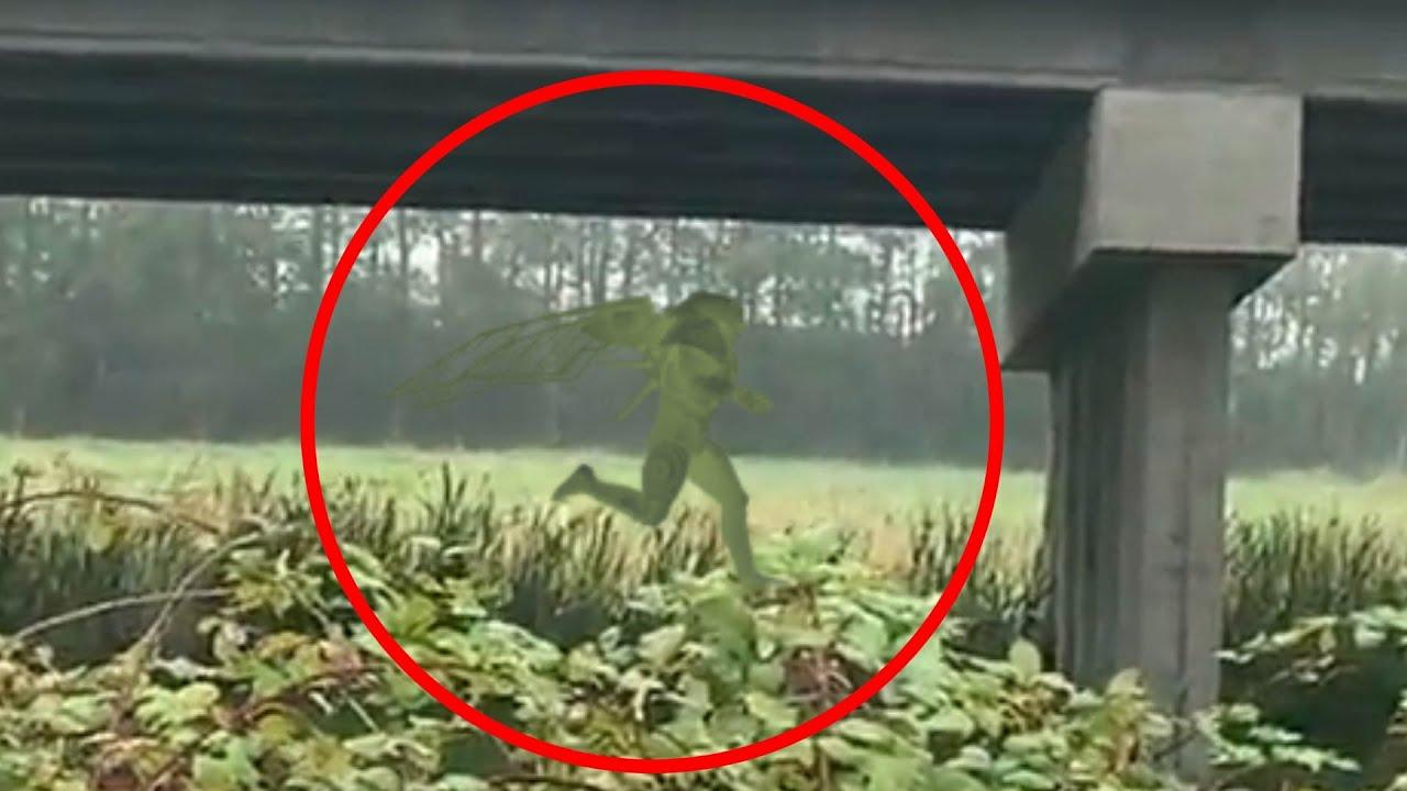 Unknown alien creature sighting in Coahuila Mexico