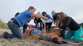 The Mendocino Mermaids Beach Rescue - Help us Keep our Beaches Clean!