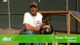 Citizen K9 Protection Dog Training