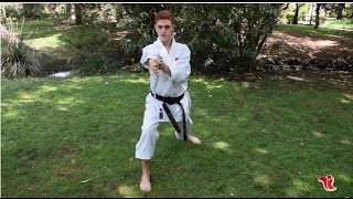El karateka de l