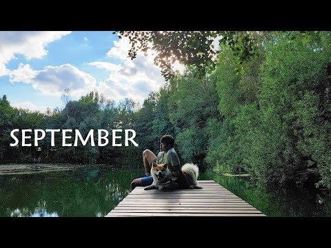 Akita Inu - September Story (秋田犬)