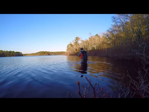 Trout Fishing On Cape Cod | April 3rd 2019