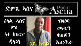 Voice of Assenna intv with Kibrom Dafla Re Eritrean Economy
