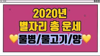 ?2020년 별자리 총운세|물병|물고기|양|음성자막?