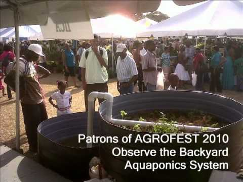 Barbados LD Aquaponics &Organic Farming in Baird's Village