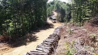 Zonguldak kozlu orman işletme odun yükleme 3